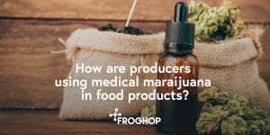 How are producers using cannabis in food products?